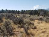 1705 Elk Springs Drive - Photo 17