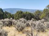 1705 Elk Springs Drive - Photo 18