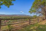 1485 Stoney Ridge Drive - Photo 23