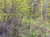 TBD Elk Mountain Drive - Photo 4