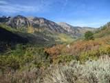 TBD Serpentine Trail - Photo 2