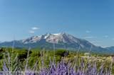 109 Basalt Mountain Drive - Photo 31