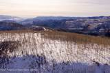 TBD Elk Ridge Road - Photo 9