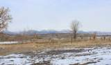 10991 320 County - Photo 4