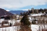 4000 Brush Creek Road - Photo 15