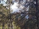 3292 Elk Springs Drive - Photo 2