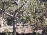 3292 Elk Springs Drive - Photo 5
