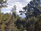 3292 Elk Springs Drive - Photo 6