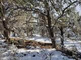 3221 Elk Springs Drive - Photo 1