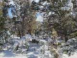 3221 Elk Springs Drive - Photo 2