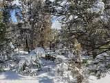3221 Elk Springs Drive - Photo 3