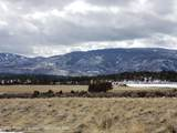2817 Elk Springs Drive - Photo 3