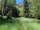 TBD Elk Mountain Drive - Photo 13