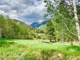 TBD Elk Mountain Drive - Photo 16