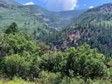 TBD Elk Mountain Drive - Photo 3