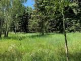 TBD Elk Mountain Drive - Photo 6