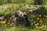 191 Yellow Fox Lane - Photo 17