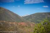 288 Aspen Oak Drive - Photo 5