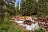 1679 Ruedi Creek Road - Photo 30