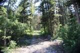 TBD Jasey Trail - Photo 2