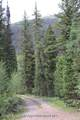 TBD Jasey Trail - Photo 6
