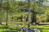 303 Conundrum Creek Road - Photo 31