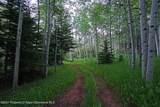 11500 Snowmass Creek Road - Photo 16