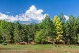 1092 Woody Creek Road - Photo 31