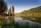 001899 Woods Lake Road - Photo 64