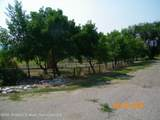 314 Round Tree Road - Photo 39