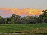 59346 Spring Creek Road - Photo 4