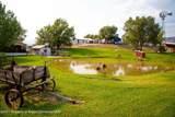 6021 County Road 233 - Photo 55