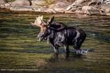 78 River Glen - Photo 38