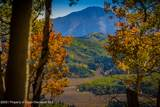 TBD Sunlight Mountain Ranch - Photo 13