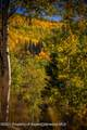 TBD Sunlight Mountain Ranch - Photo 9