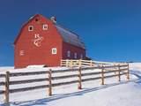 TBD Saddle Drive - Photo 10