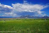 5739 Scenic Mesa Road - Photo 16