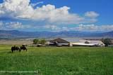 5739 Scenic Mesa Road - Photo 54