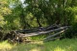 TBD County Road 312 - Photo 28