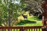 1346 Sage Ridge Road - Photo 33