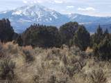2415 Elk Springs Drive - Photo 2