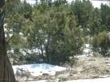 360 Cerise Ranch Road - Photo 6