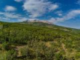 TBD Sopris Mountain Ranch Road - Photo 10