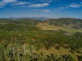 TBD Sopris Mountain Ranch Road - Photo 12