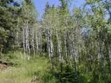 Tbd Elk Mountain Drive - Photo 2