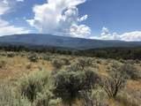 1705 Elk Springs Drive - Photo 8