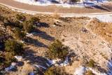 298 Black Bear Trail - Photo 8