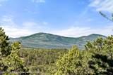 TBD County Road 112 - Photo 25