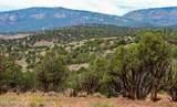 32323 Colorado River Road - Photo 12