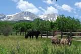 1601 Sopris Mountain Ranch Road - Photo 35